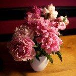 sig-tak-med-blomster