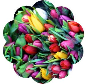 Send de rigtige blomster